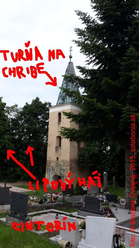 Turňa na Chribe v Starej Turej.